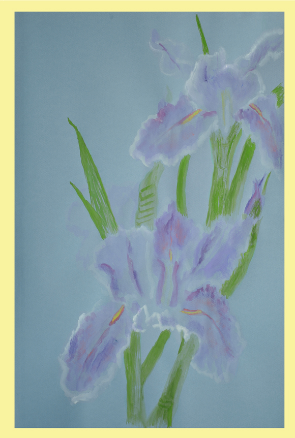 Louisiana Iris Andy Dandy Watercolor by Thibodaux, Louisiana Artist Susan Talbot