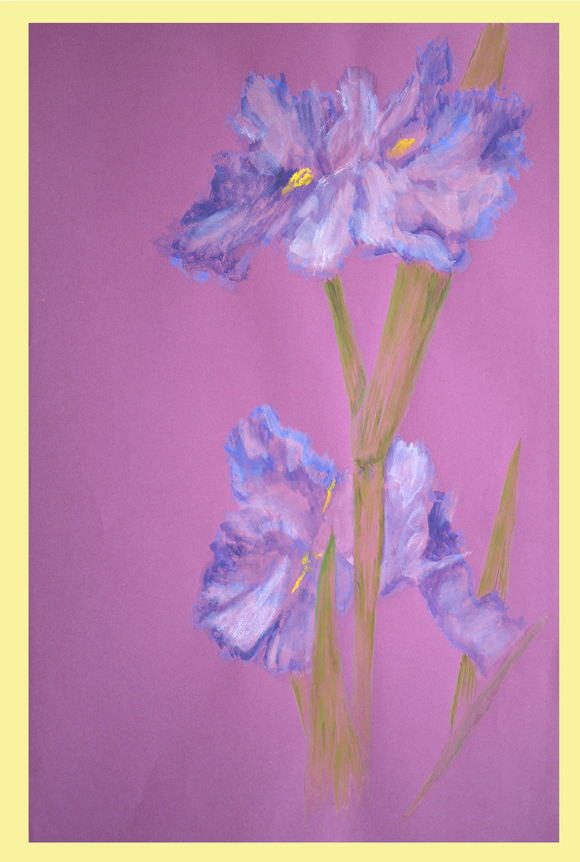Louisiana Iris Atchafalaya Watercolor by Thibodaux Louisiana Artist Susan Talbot