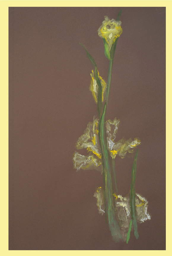 Watercolor of the Louisiana Iris Brazos Abundance by Thibodaux Louisiana Artist Susan Talbot