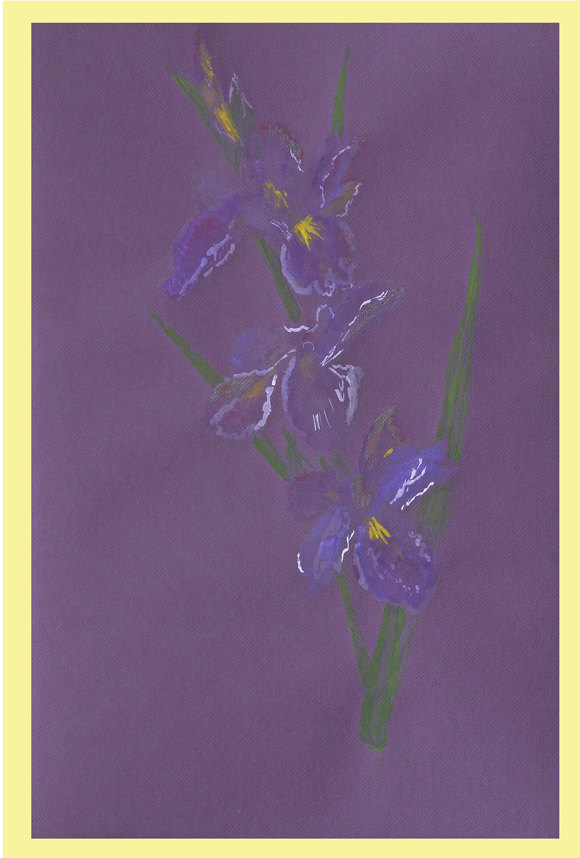 Watercolor of the Louisiana Iris 'Rusty O' by Thibodaux Louisiana Artist Susan Talbot